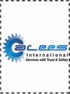 ALEES INTERNATIONAL