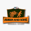 AMEER AND SONS
